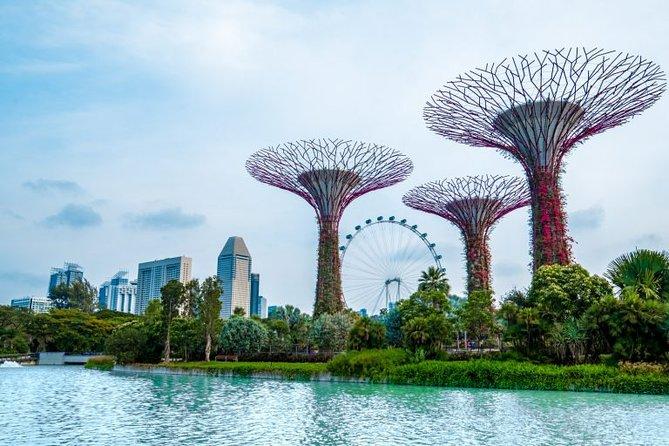 3D 2N Singapore Tour