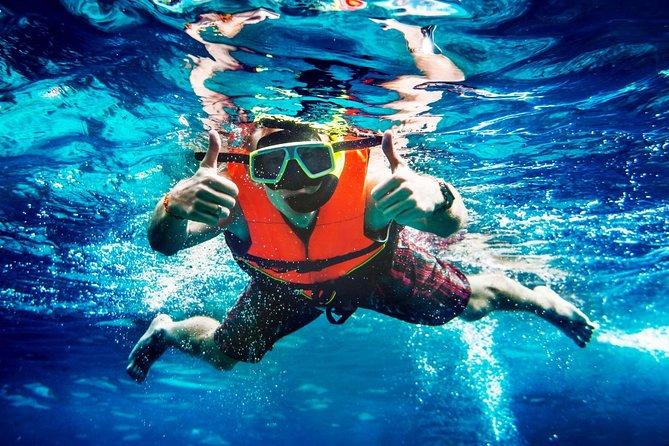 Half-Day Snorkeling Cruise in Aruba