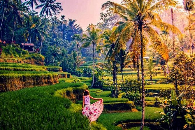 Ubud Art Villages, Rice Terraces & Waterfall