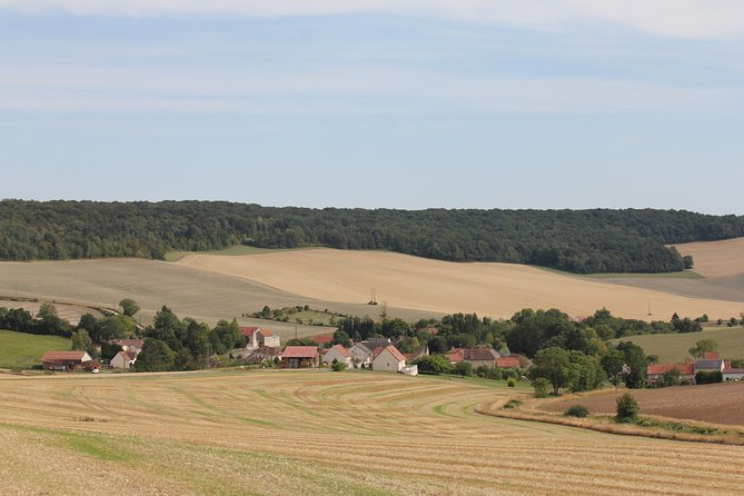 Private 3hr Tour of Two Champagne Wineries with Tasting from Reims