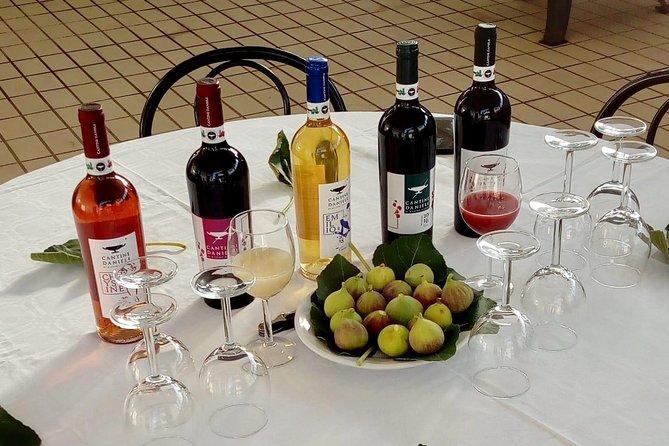 Daniele Cantine Wine Tasting