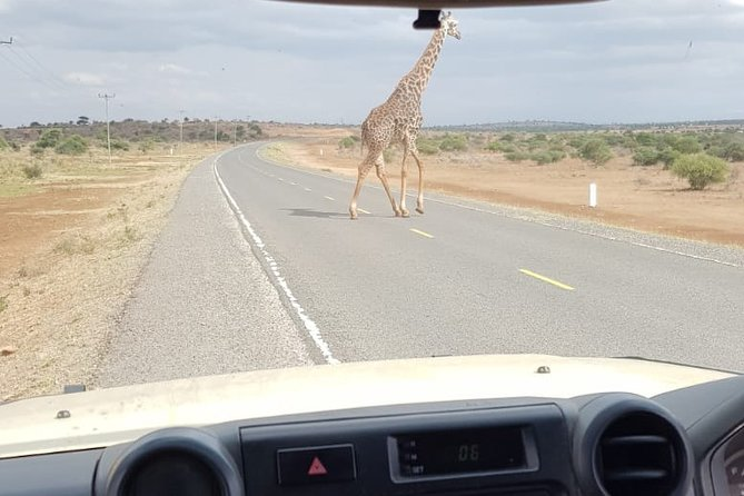 Arusha National Park Half Day Tour