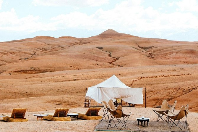 Full-Day Private City Tour camel ride and magical dinner in Agafay Desert
