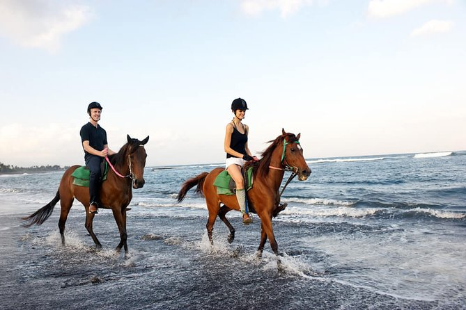Bali Horse Riding in Saba Bay for 1,5 Hours with Pick Up Service