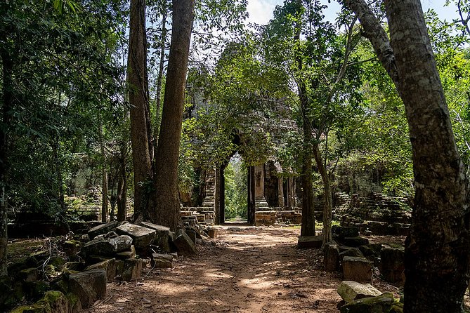 Walking Through the Jungles in Angkor Full Day Private Tour