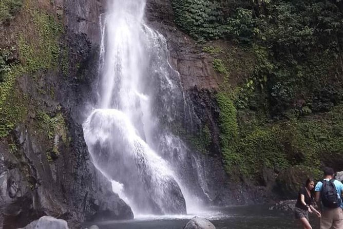 Lovina Beach Private Guided Tour : Dolphin Watching & Waterfall - Free WiFi