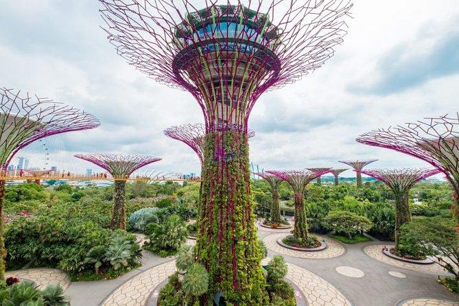 4D 3N Singapore Tour