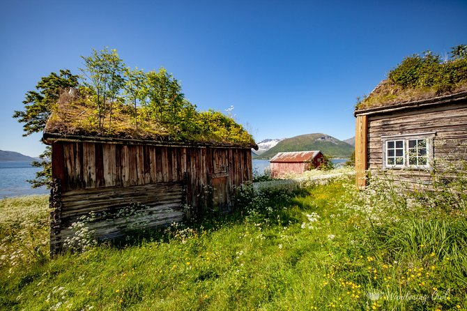 7-Day Self-Drive-Tour Senja Island from Tromsø - Nature & Culture Holiday