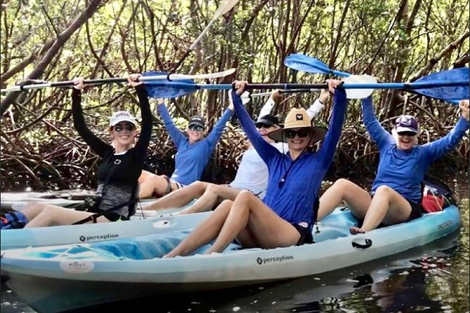 PRIVATE Naples Mangrove Preserve Kayak Adventure Tour
