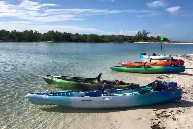 PRIVATE Kayak Tour Barefoot Beach Preserve Magical Mangrove Estuary Adventure