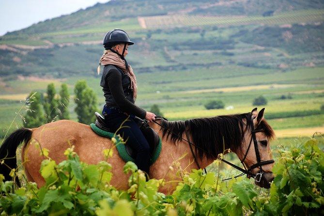 Horseback riding through the vineyards of the Rioja Wine Country