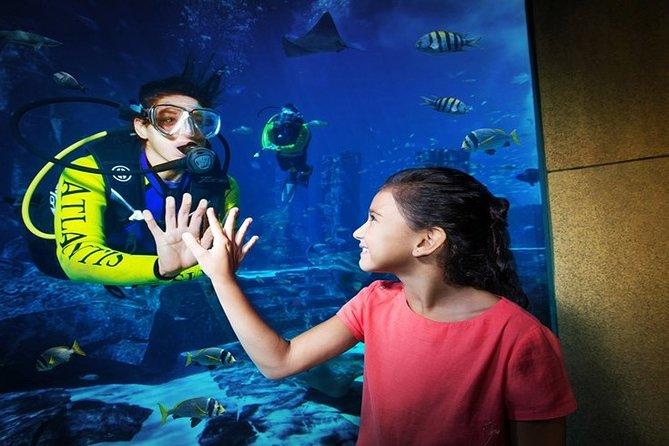 Dubai Atlantis Aquaventure and Lost chamber Entrance ticket ( E-ticket )