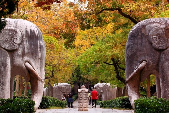 4-Hour Nanjing Private Tour: Xiaoling Tomb, Ming City Wall and Memorial Hall