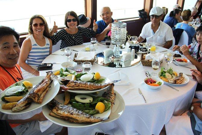 Istanbul Lunch Cruise: Long Circle Bosphorus Cruise up to Black Sea