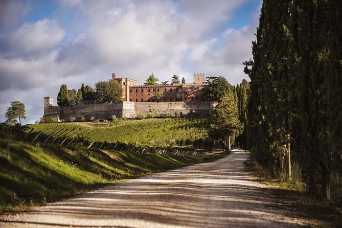 Siena and Chianti Castle with Lunch&WineTasting from Florence