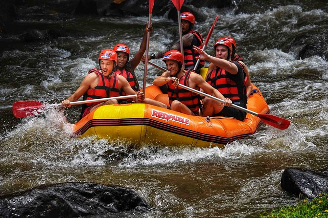 Ayung White Water Rafting and Ubud Tour : Fullday Private Tour