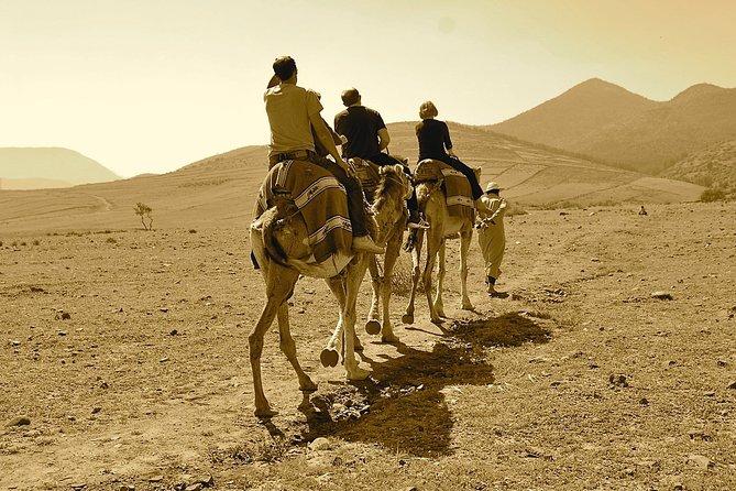 Full-Day Agafay Desert Adventure & Atlas Mountains from Marrakech