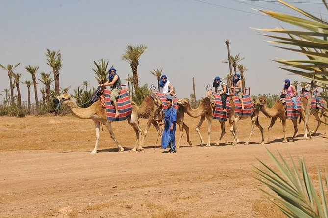 Activity in Marrakech combined Quad and camel ride