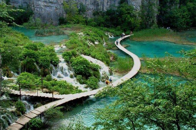 Bach Ma National Park Trekking
