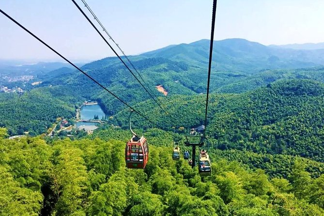 All Inclusive Yixing Bamboo Forest Private Day Tour from Shanghai