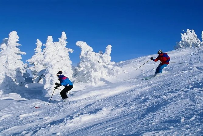 Snow Skiing in Manali
