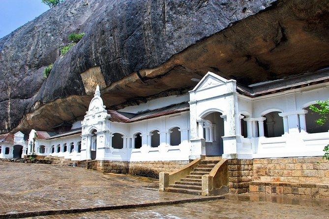 Van Transfer from Colombo to Pasikudah - Visit Dambulla & Safari en route