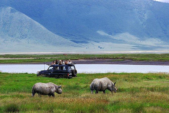 5-Day Tanzania Safari Tour with Pickup and Accommodation
