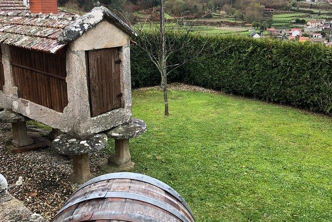 Private Tour Alvarinho (Melgaço and Monção) includes 3 wine tastings