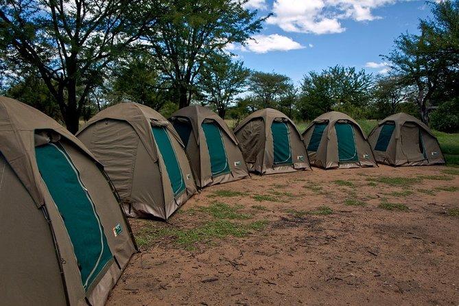 4 days Budget Camping Safari Tour