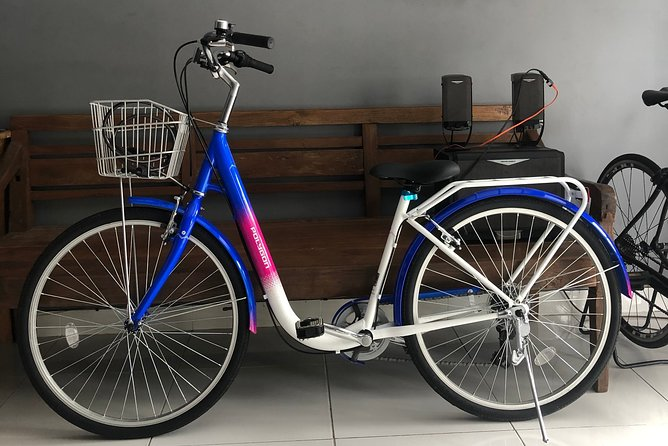 Bali Bicycle Rental