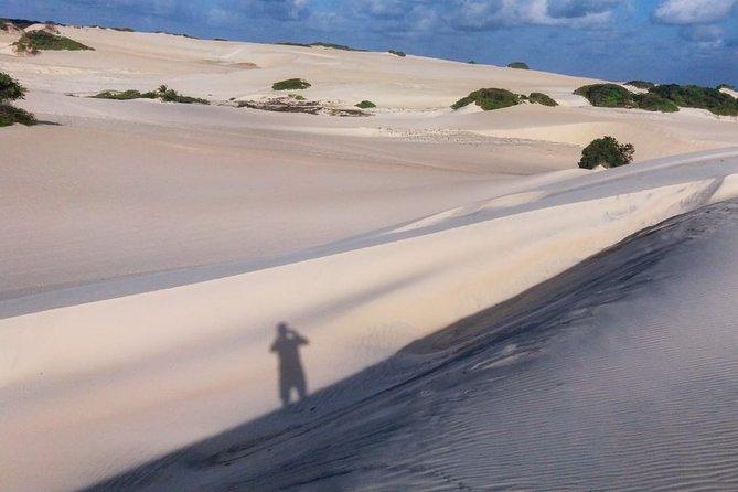 Buggy Ride (Genipabu Dunes)