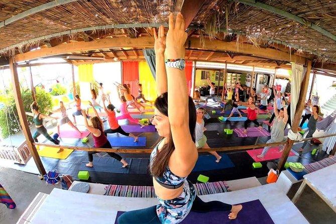 Yoga Drop In Classes