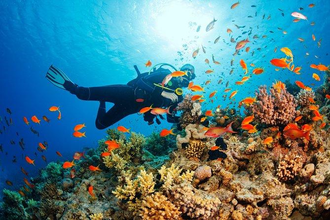Marmaris Scuba Diving in crystal clear waters