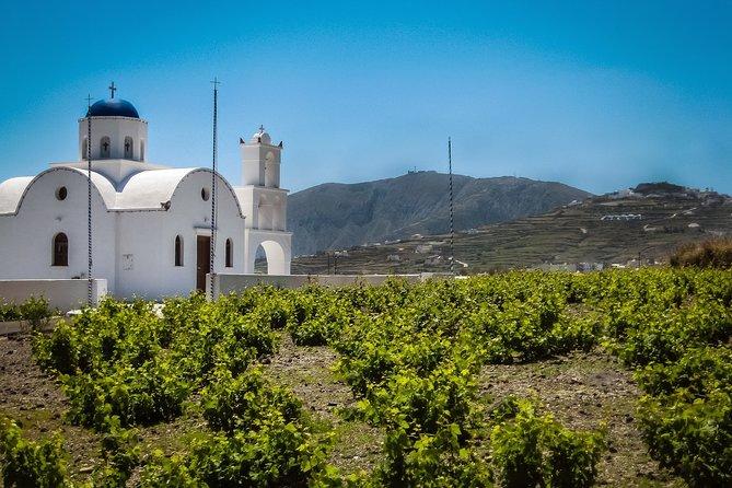 Sip your way around Santorini private wine tour