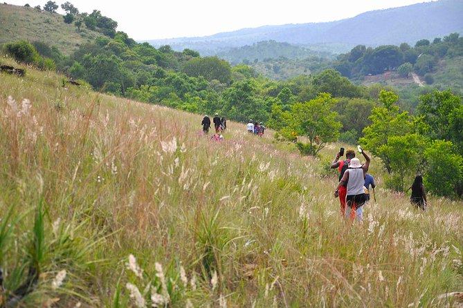 Hartbeespoort Nature Walk