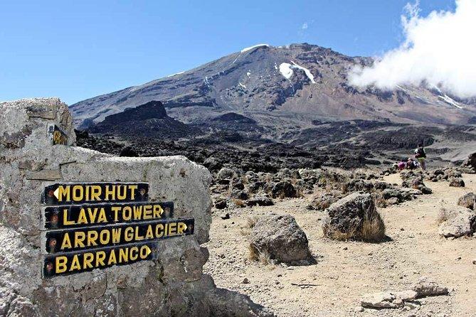 8 Days Itinerary for Kilimanjaro Lemosho Route Trekking