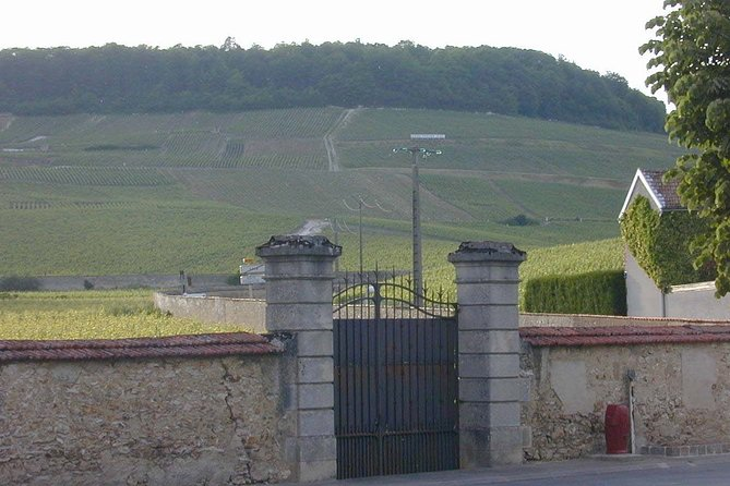 Private Champagne Full Day Tour - 100% Grand Cru Chardonnay