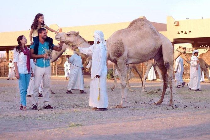 Al Ain City Tour from Dubai (Cultural & Themes tours )