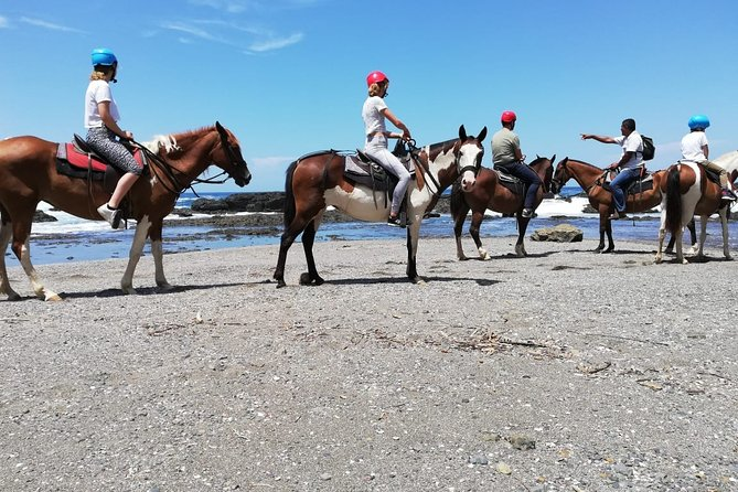 Horseback Riding in Playa Carrillo