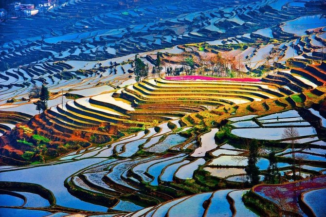 2 Day Private Transfer Service to Yuanyang Rice Terrace from Kunming