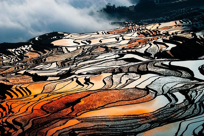 2-Day Private Tour to Stone Forest and Yuanyang Rice Terrace from Kunming