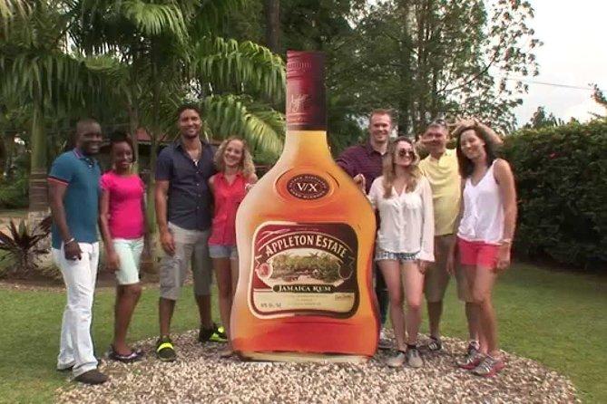 Black River Safari and Appleton Rum Estate Private Tour