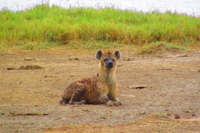 2 Days Safaris to Mount Kenya Fairmont Safari Club