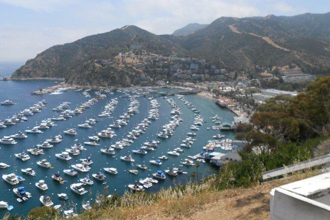 Catalina Island Scavenger Hunt Adventure