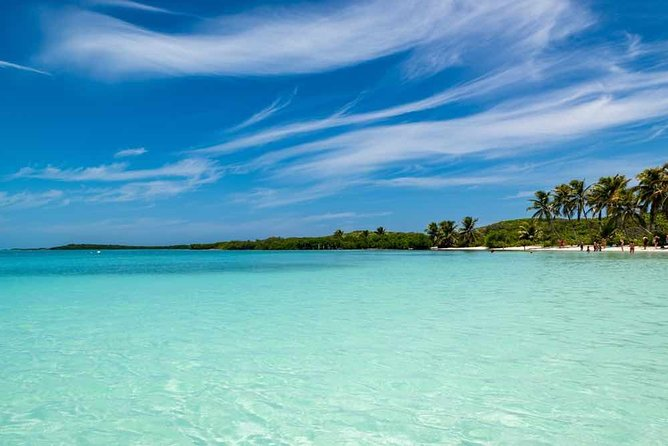Contoy Island Tour from Playa del Carmen