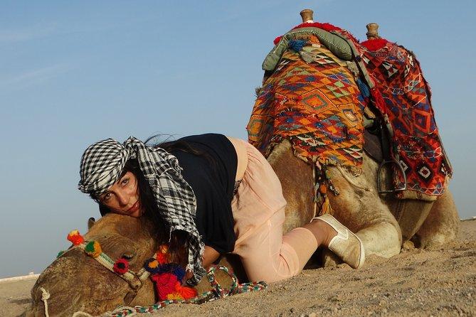 One hour Camel Ride At Amazing Desert - Sharm El Sheikh