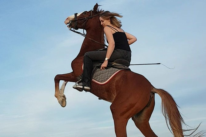 Two hours Horse Riding At Amazing Desert - Sharm El Sheikh