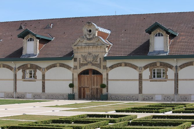 Private Champagne Day Tour of Ruinart Cellars & Grand Cru Family Vineyards