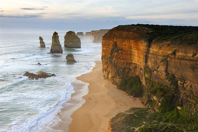 Melbourne Combo: Great Ocean Road + Phillip Island Express + Attraction Pass