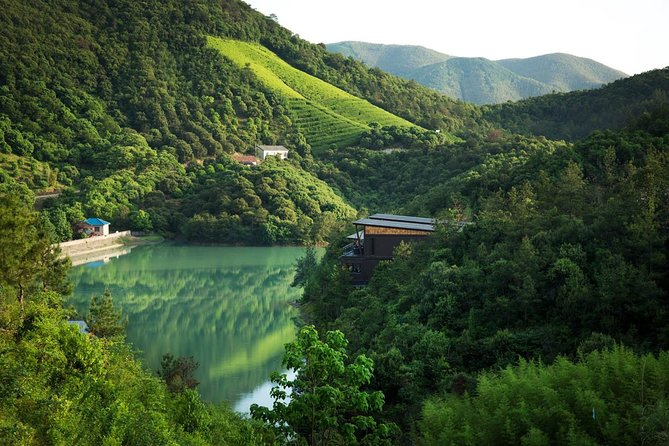 Private Transfer to Mogan Mountian from Hangzhou